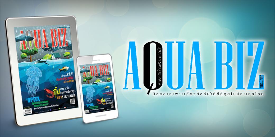 Aqua Biz