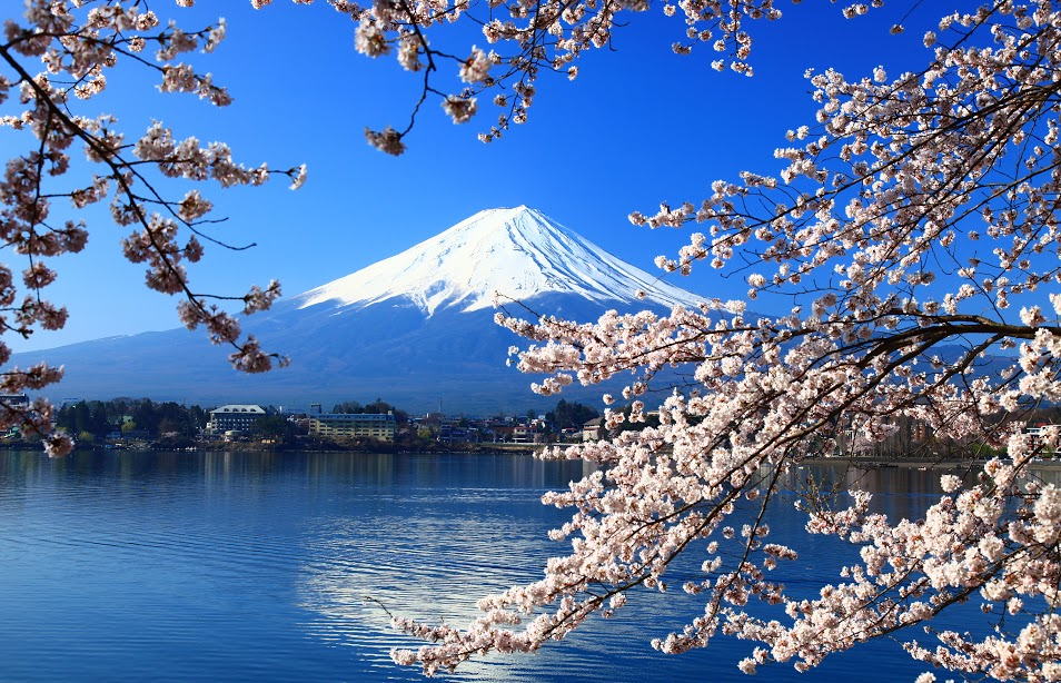 GO! JAPAN ท่องเที่ยว-หมวดหมู่-หน้าปก-อุ๊คบี
